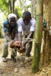 Tow community members enjoying their handwashing station in Kenema, Sierra Leone