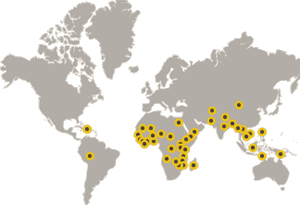 World map showing CLTS in use